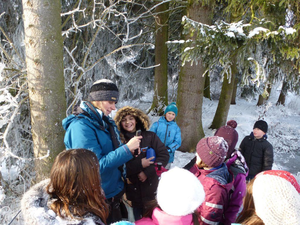 winterprojekt-im-wackelwald-temperatur-messen-kerstin-wernicke